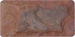 Известняк пятисторонней обработки с галтовкой - добыча и продажа природного камня
